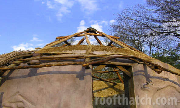 Cob Bale Building with Tree Saplings at MoonTree Community, IN