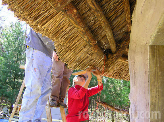 Dressing the Eaves of Cob Building Thatch at MoonTree Community, IN
