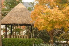 New Harmony Thatch Gazebo