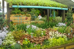 Green Roofs Completed