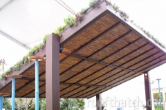 Green Roof Patio Cover with Water Reed  Screening