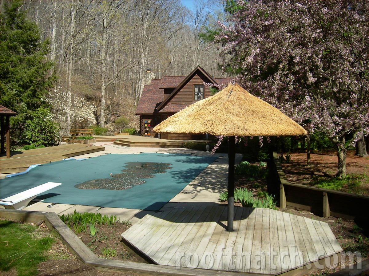 Custom Thatch Umbrella by Deck and Pool