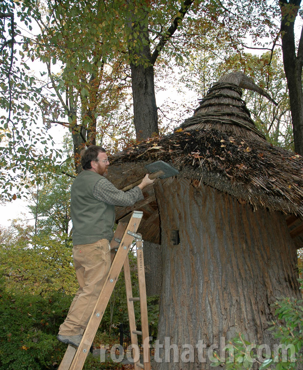 Thatched Tulip Tree House