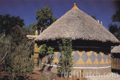 African Thatch Roof at Zoo